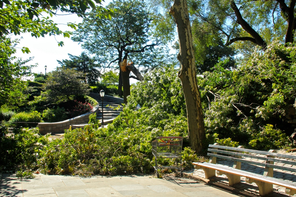 carl shurz park, new york, hurricane irene damage