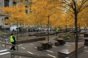 Zuccotti park cleared