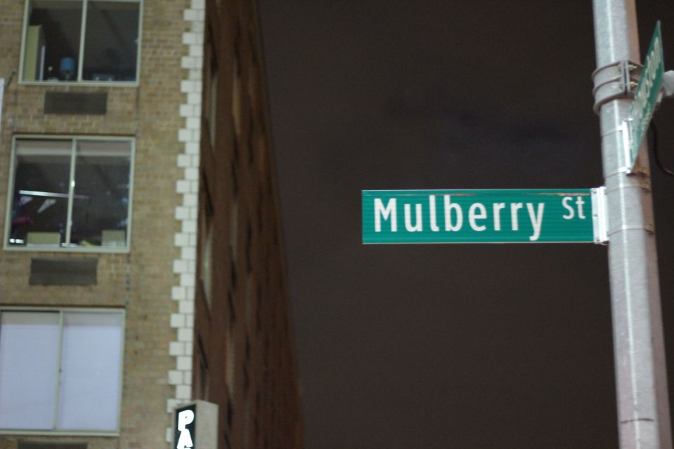 Mulberry Street sign in new york at night