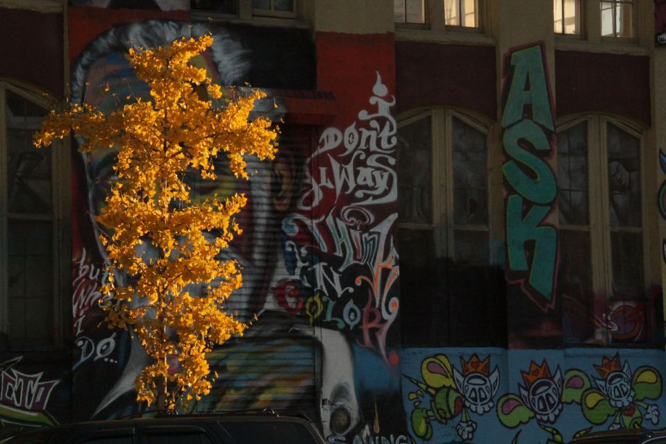 Autumn leaves 5Pointz