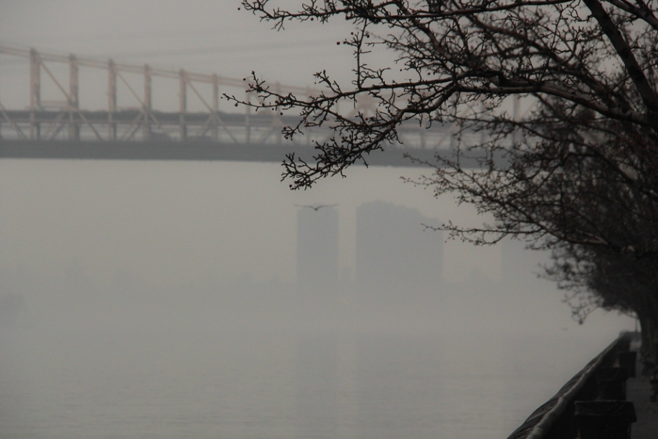 Foggy_East_River-2