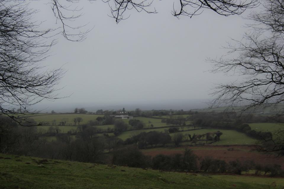Dartmoor - 018