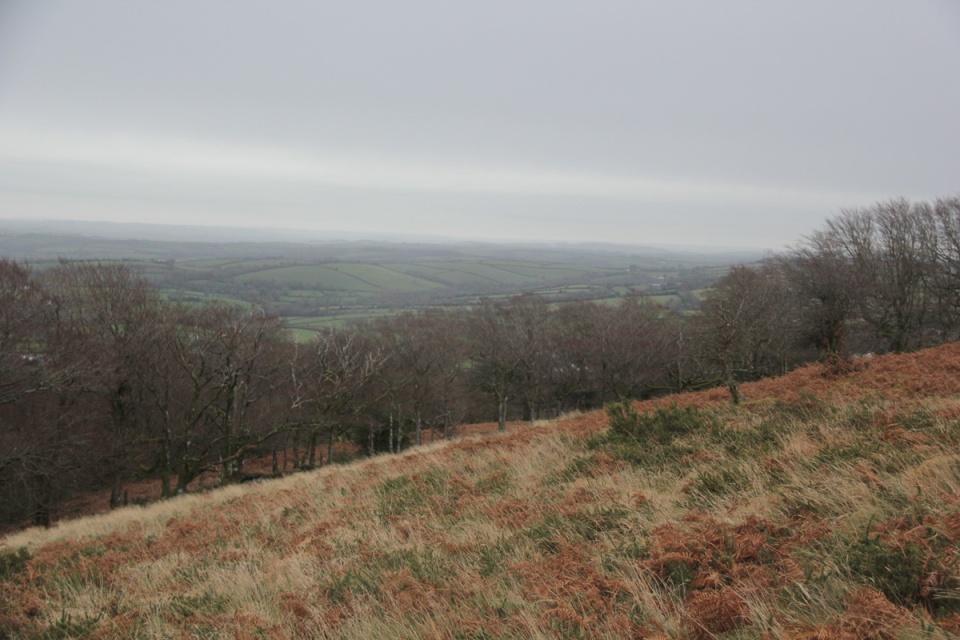 Dartmoor - 024
