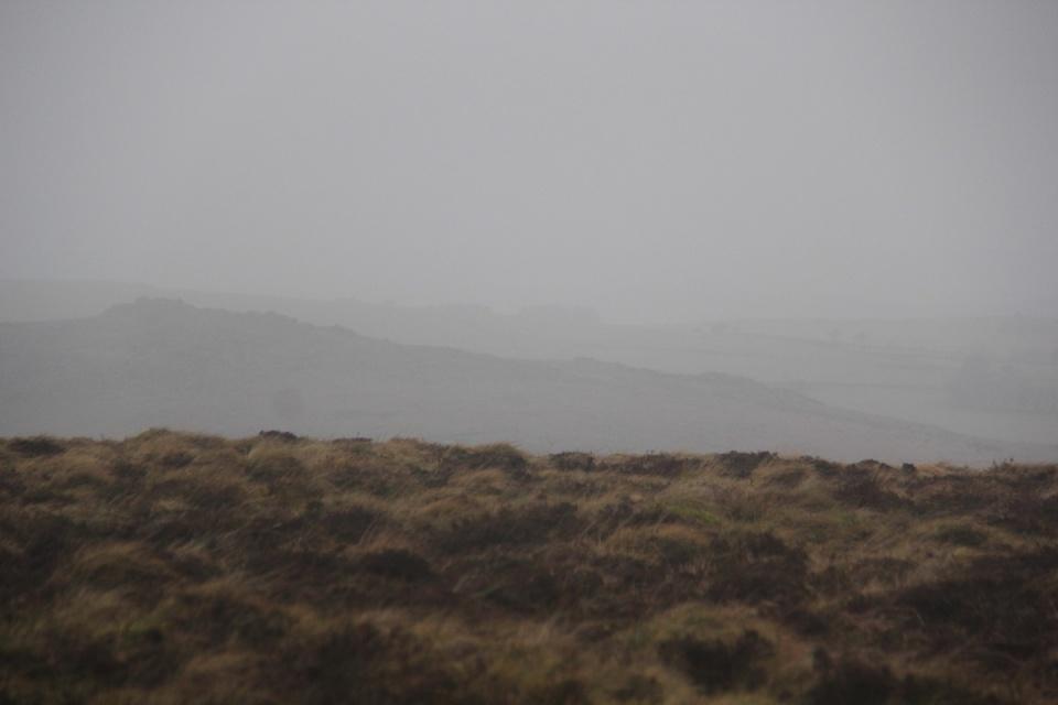 Dartmoor - 054