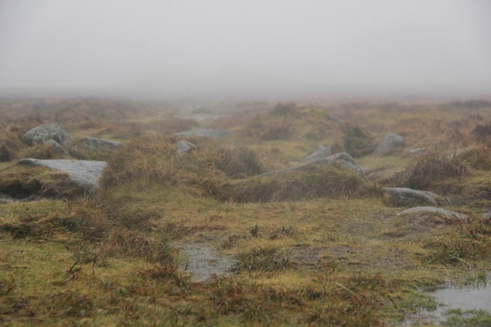 Dartmoor - 058