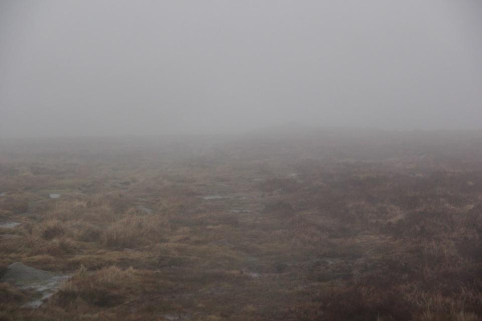 Dartmoor - 061