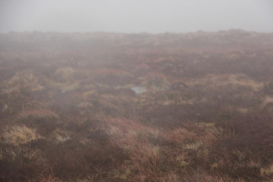 Dartmoor - 071