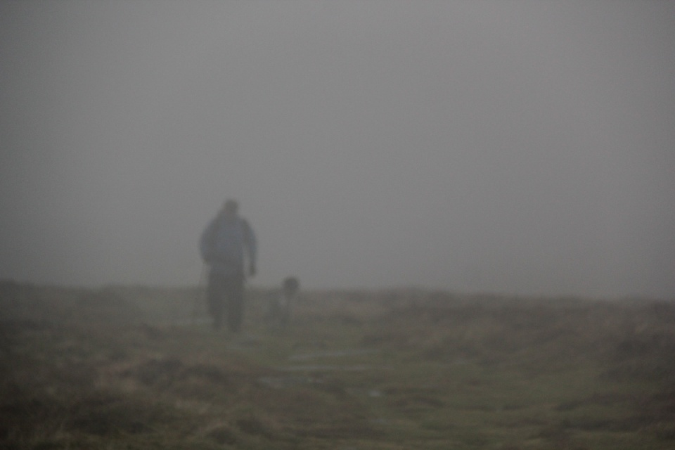 Dartmoor - 072