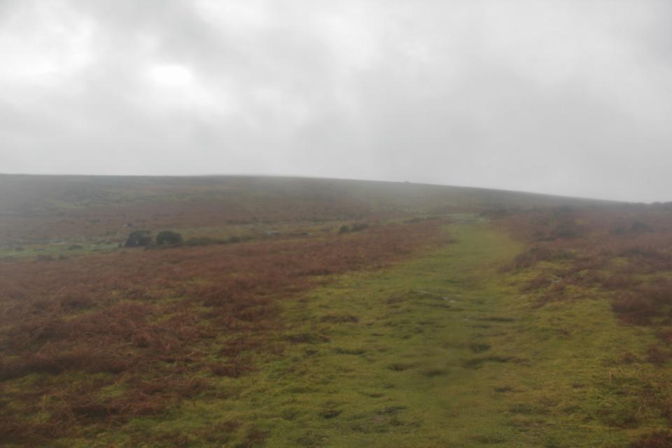 Dartmoor - 089