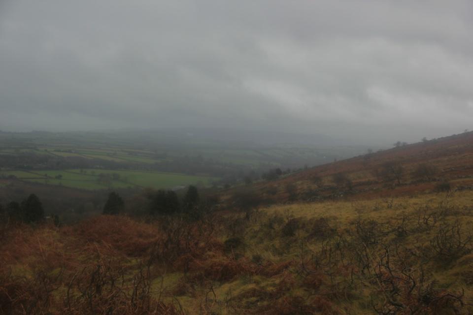 Dartmoor - 093