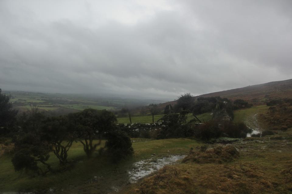 Dartmoor - 095