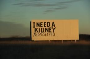 Kansas Kidney