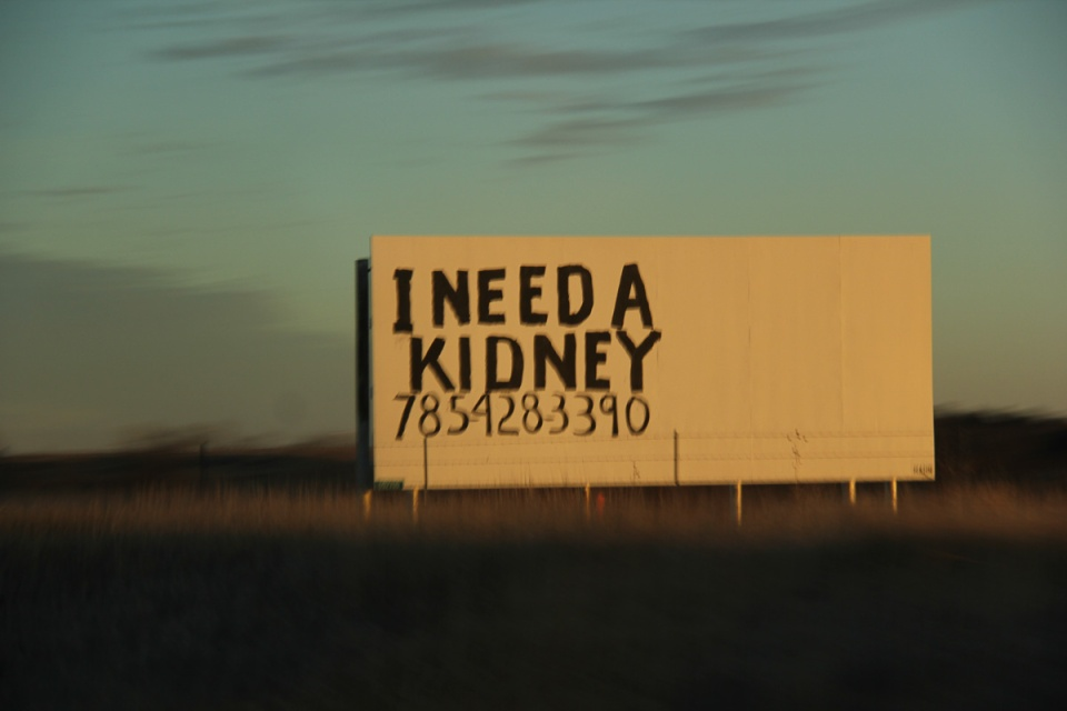 Kidney Road sign in Kansas