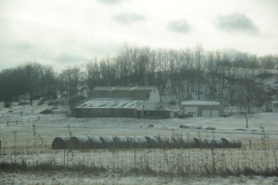 Barns in snow