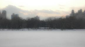blurred snow brush