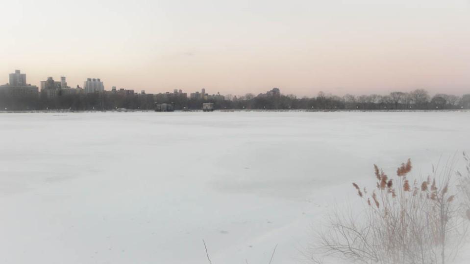Central Park Edits copy-5