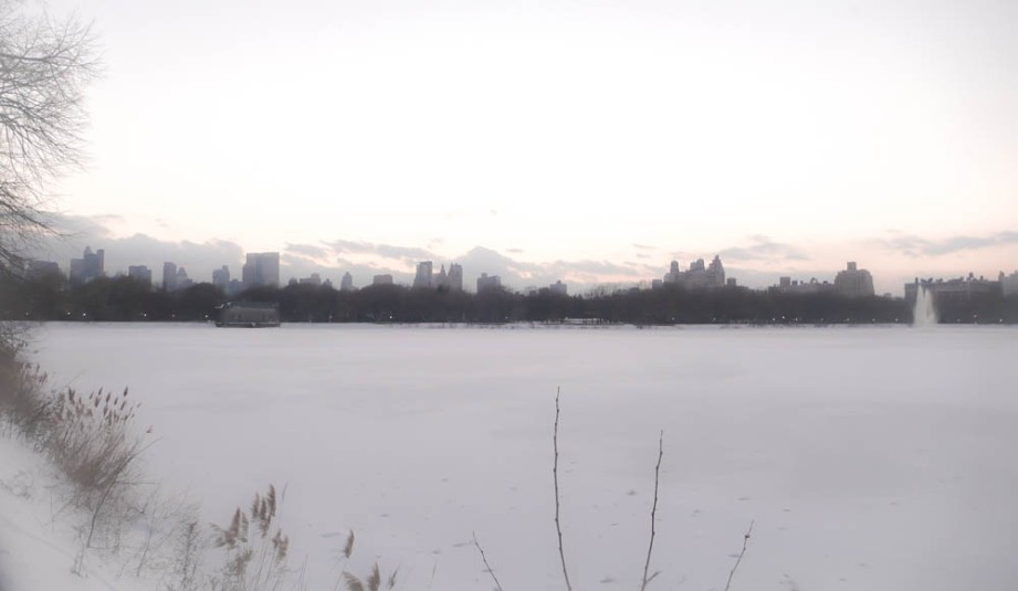 Central Park Edits copy