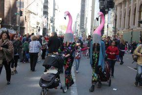 Flamingo Mums_Patti Fogarty