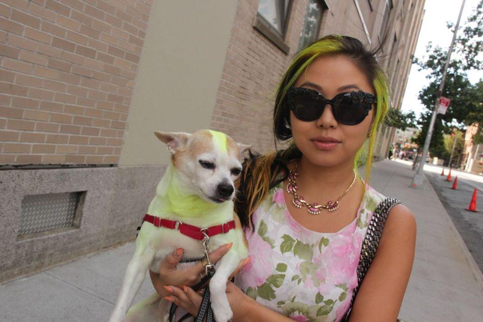 Yellow Dog Girl