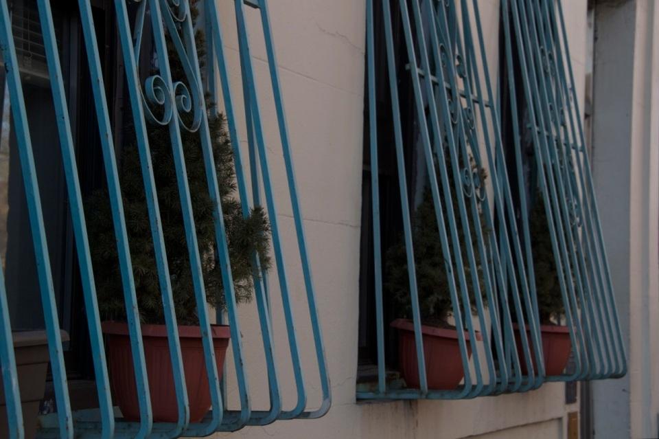 Blue Window Frames